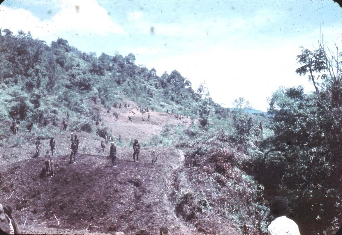 BD/24/13 - Afbeelding van de aanleg van een autoweg in de buurt van Enarotali.